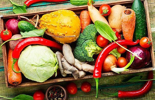 Organic vegetables in the basket